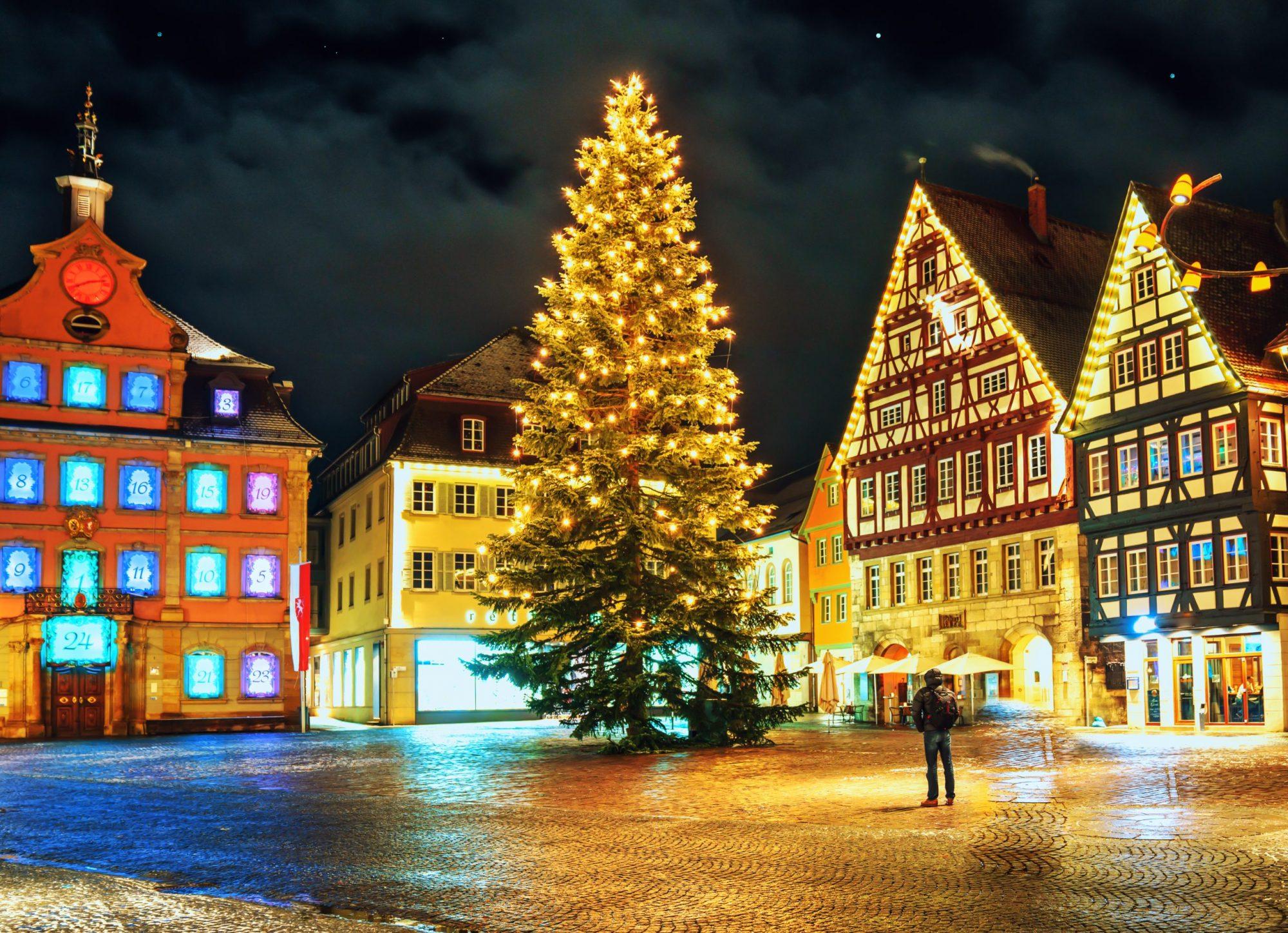 Vogelsberger-Weihnachtsbäume-XXL